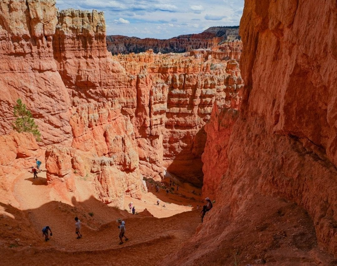 Wall Street Trail, a great hike in Bryce Canyon