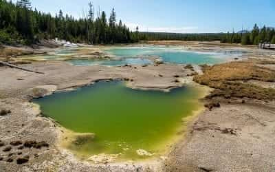 Norris Geyser Basin, the hottest and oldest basin in Yellowstone (VIDEO)