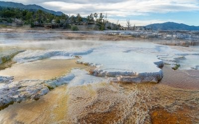 Mammoth Hot Springs, Yellowstone National Park (GALLERY)