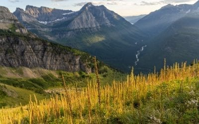 Top Things to Do In Glacier National Park, Map, Itinerary, Tips & More