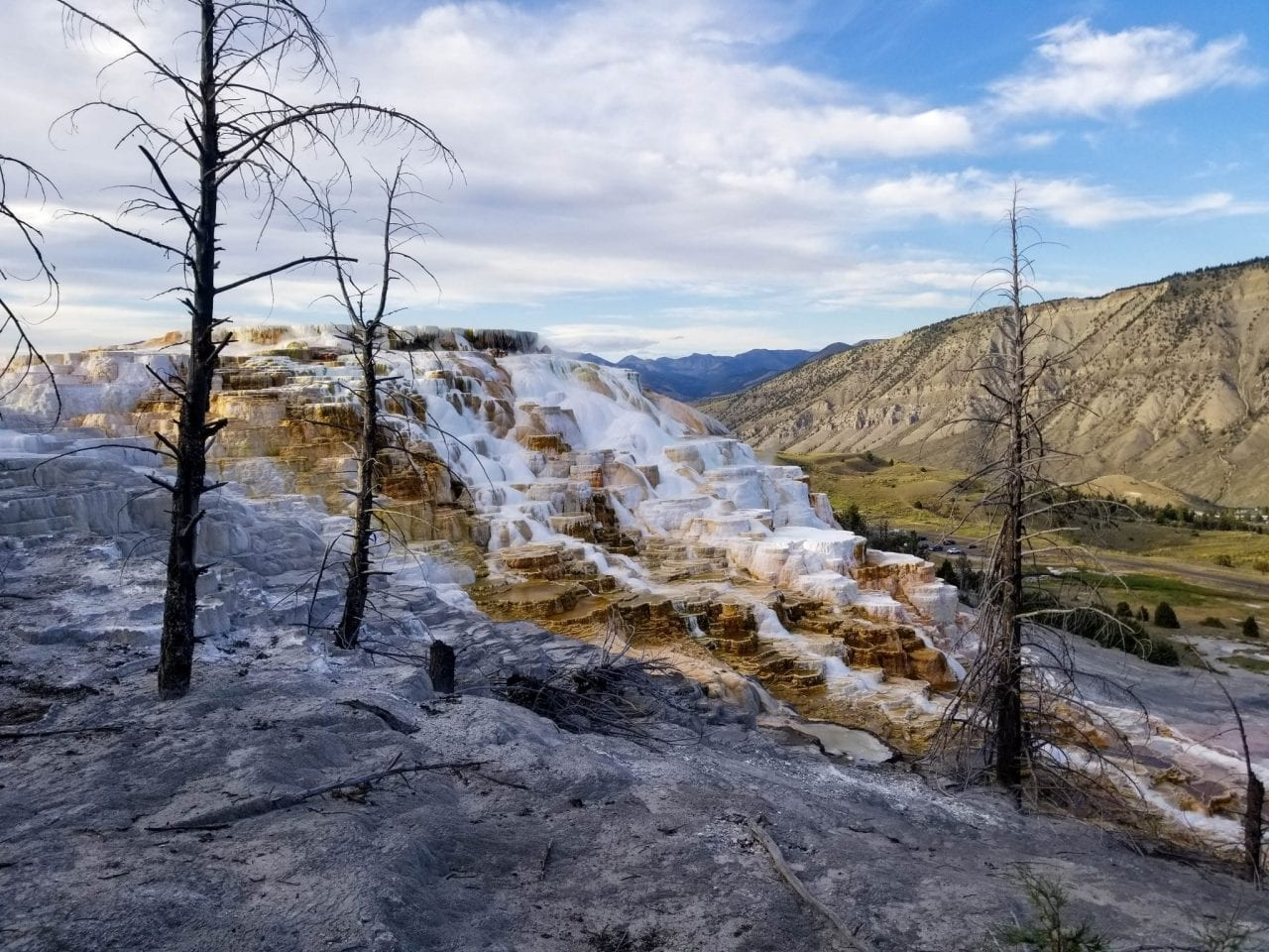 Picturesque Mammoth Hot Springs Yellowstone