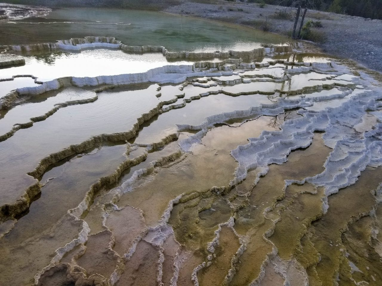 Vibrant colors of the springs in Mammoth Hot Springs Yellowstone