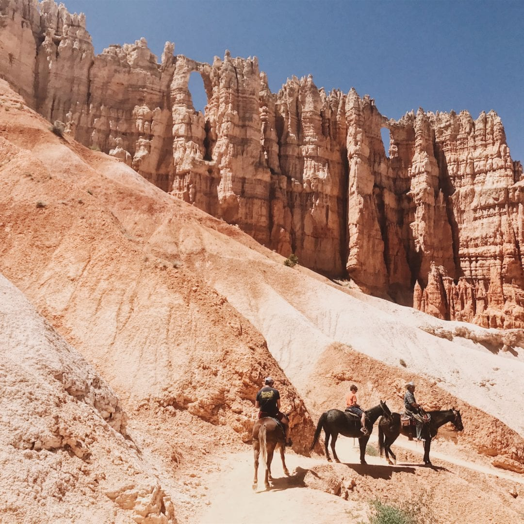 Trail Rides in Bryce Canyon