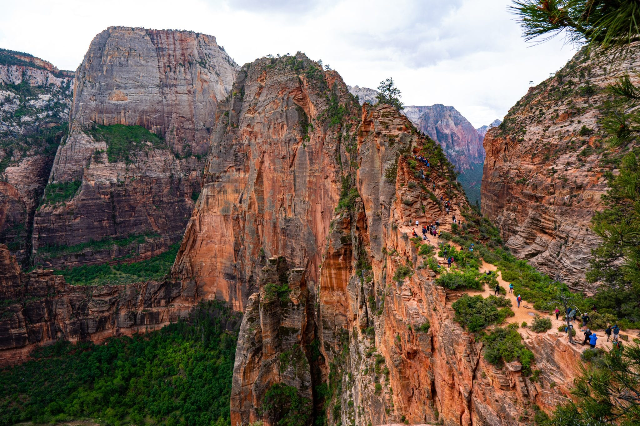 Angels Landing cover