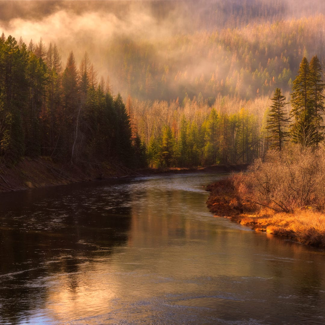 Fog rolls over the Middle Fork Flathead river in Glacier National Park, Montana