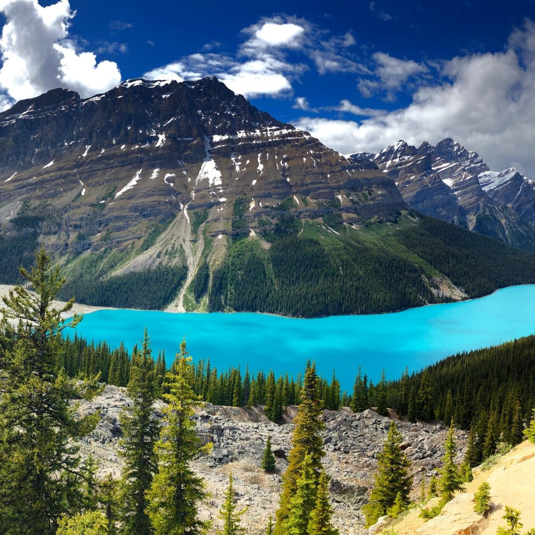 peyto lake panorama, banff national park